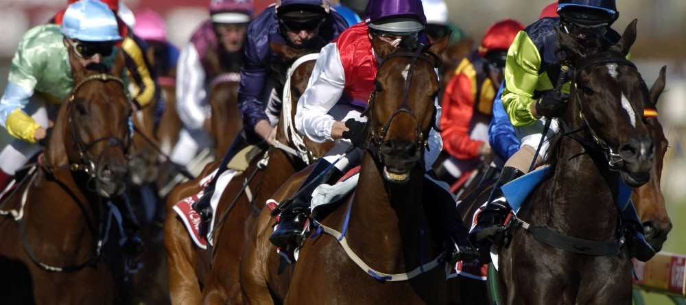 Advice for Horse Racing betting by Sports Betting Experts